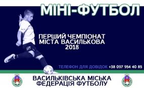 Перший чемпіонат міста Василькова по міні-футболу!